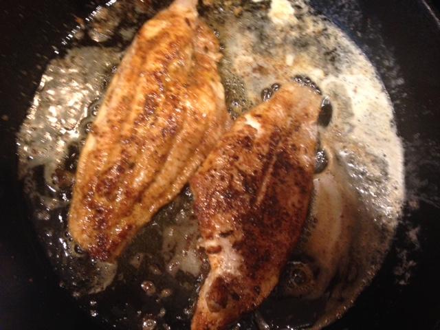 catfish 2